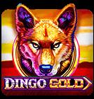 Dingo Gold Slot
